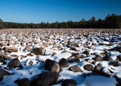 Boulder Field in Hickory Run State Park
