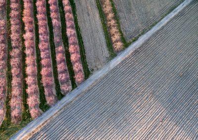 Nunda Fruit Farm in Hanover, PA