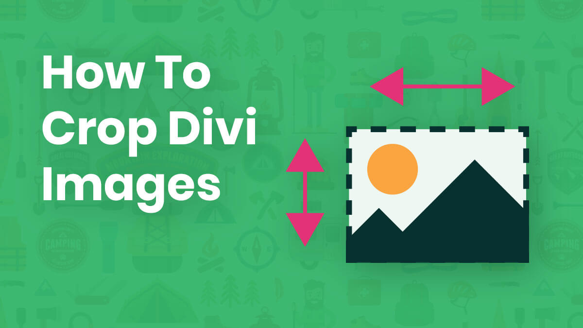 How To Crop Divi Images and Change Aspect Ratios In The Builder