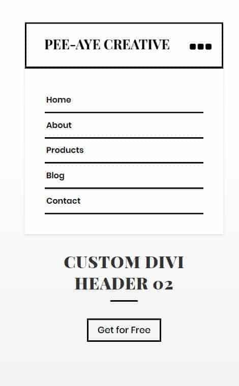 custom divi header