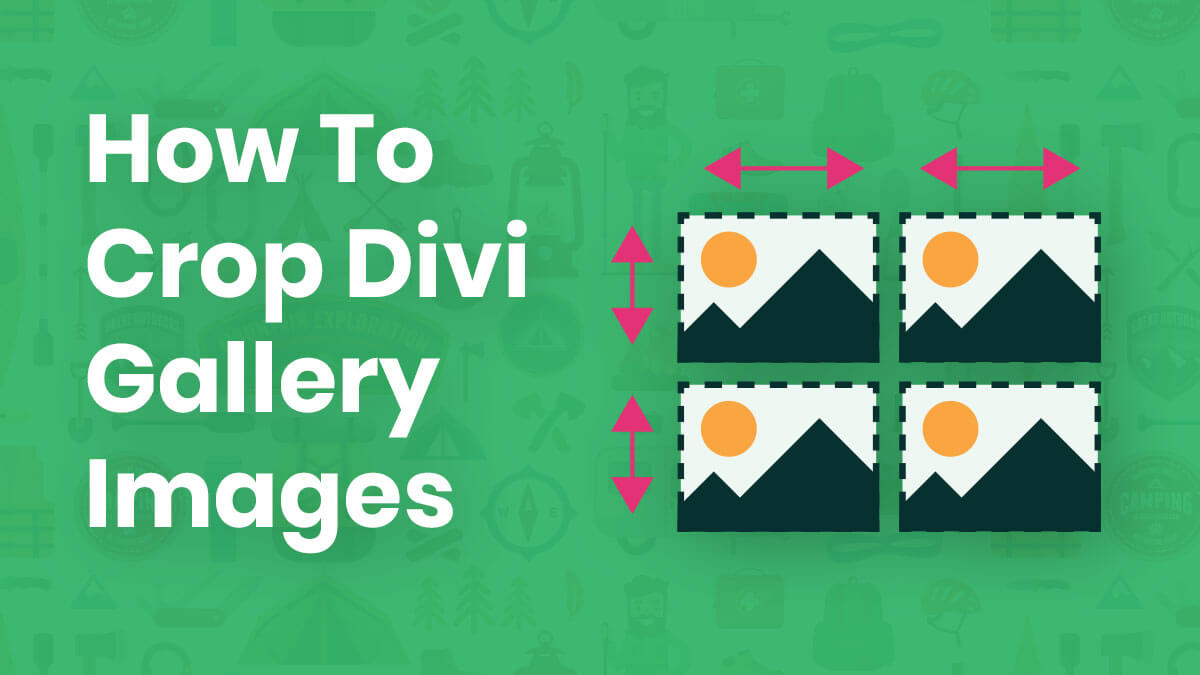 How To Change the Divi Gallery Image Aspect Ratio – Make Images Square or Any Size