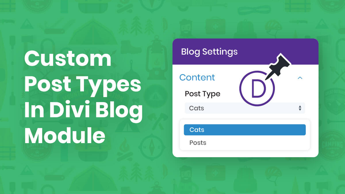 How To Display Custom Post Types In The Divi Blog Module