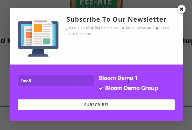 showing the custom field in Bloom for Mailchimp groups