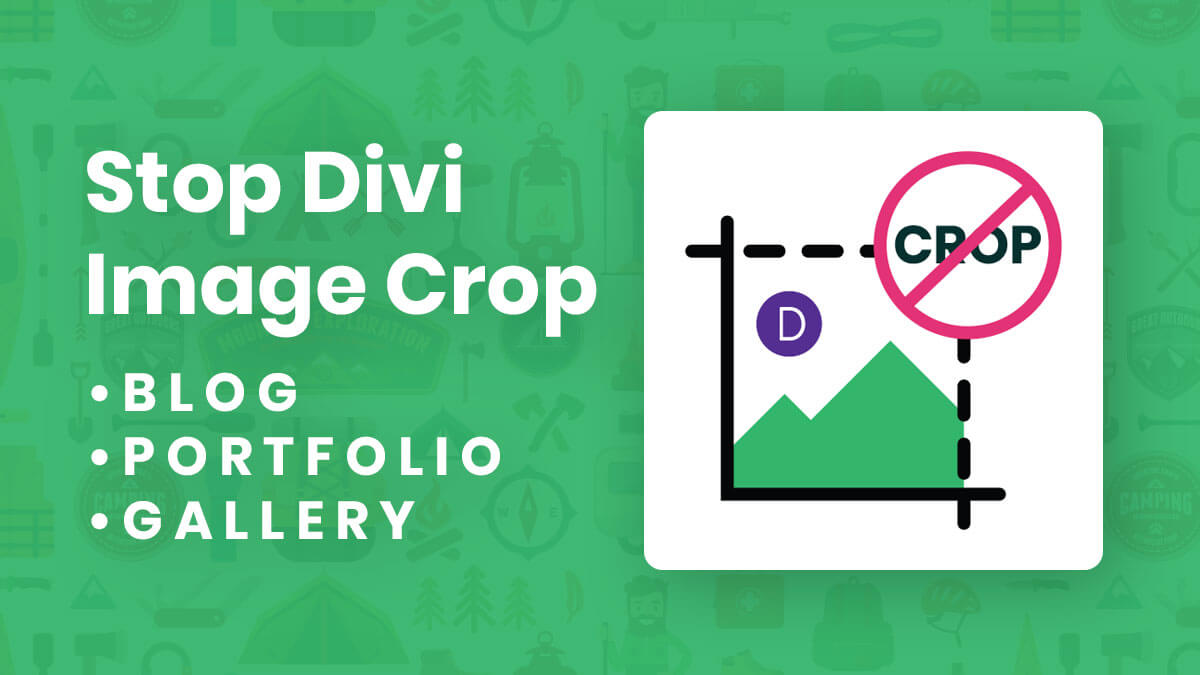 How To Stop Divi Image Crop – Blog, Portfolio, and Gallery Modules