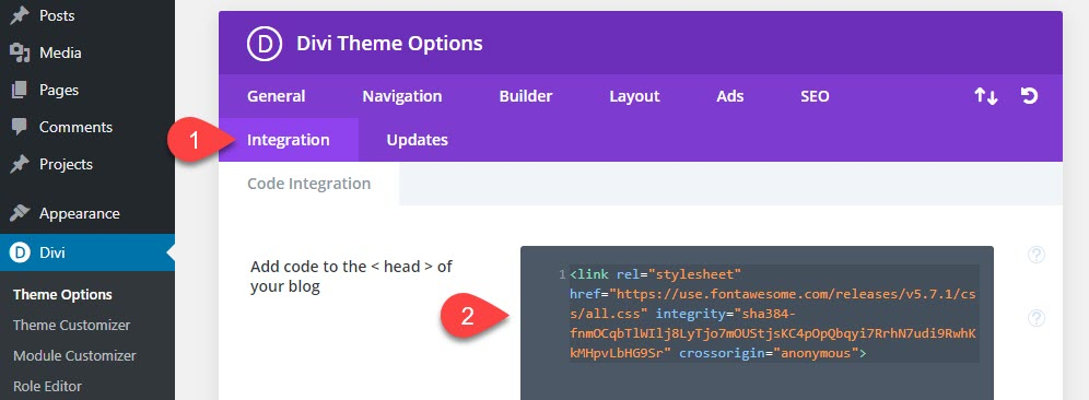 Add your Font Awesome code to the Divi integrations tab