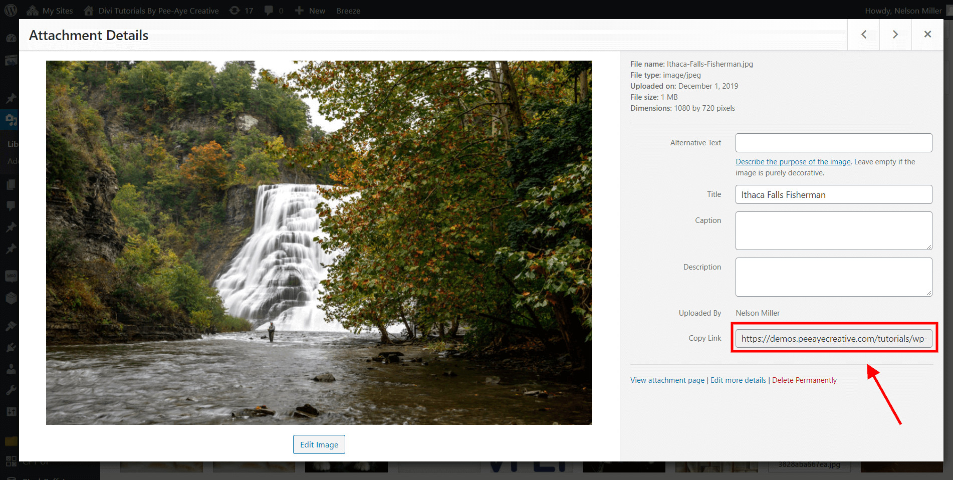 copy the link to the image to add it to the Divi menu item
