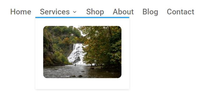 image in Divi menu submenu dropdown with custom CSS