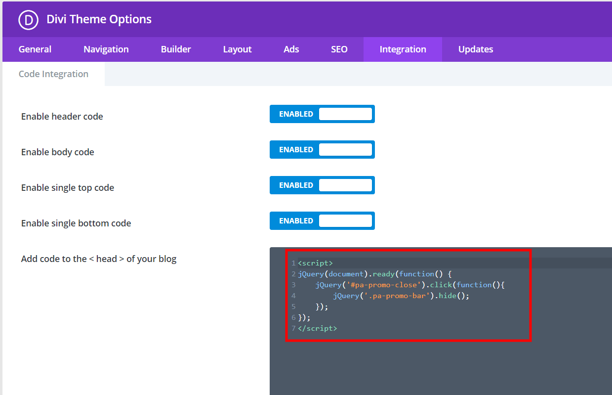 add javascript code to the integrations areas for the Divi promo bar