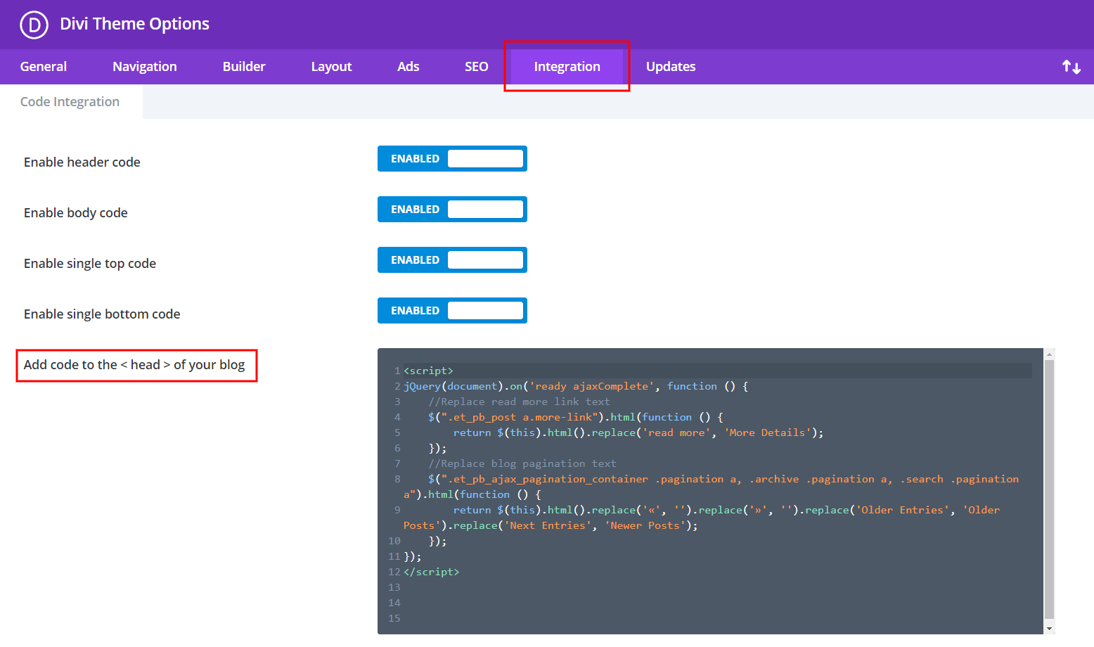 add code to the Divi Theme Options Integrations tab