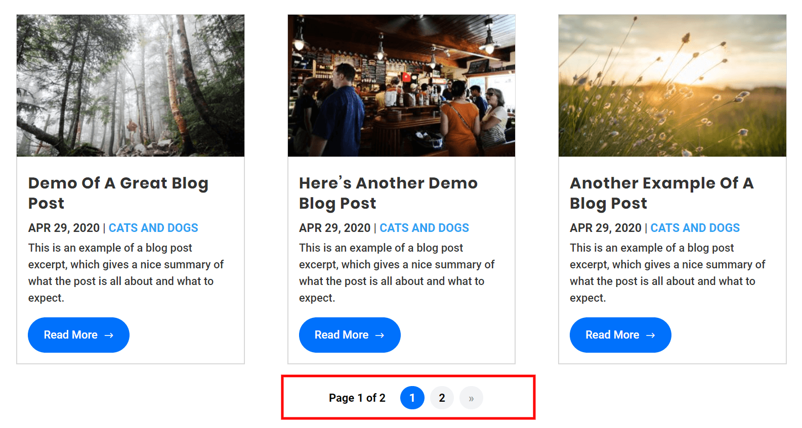 Divi blog pagination with the WP PageNavi plugin after adding the CSS customization