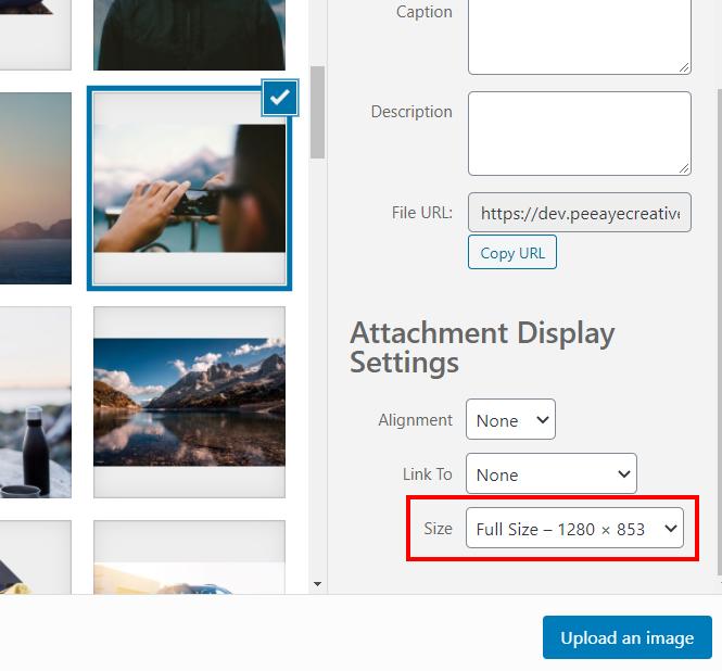 choosing a WordPress image size