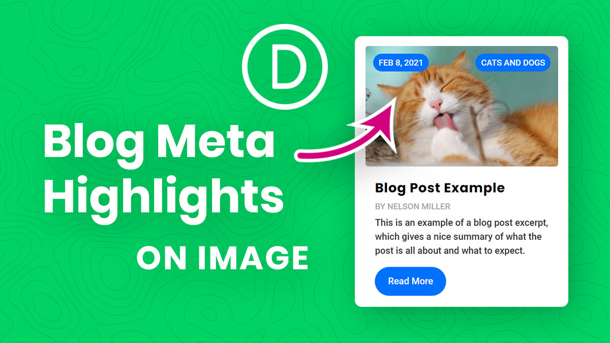 How To Move And Highlight The Divi Blog Module Author Date Or Category Over The Image Tutorial by Pee Aye Creative