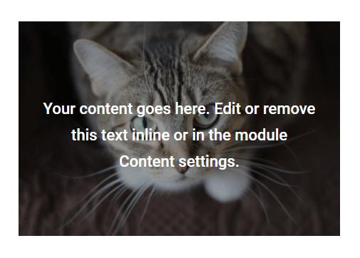 add a Divi Text module over an image module