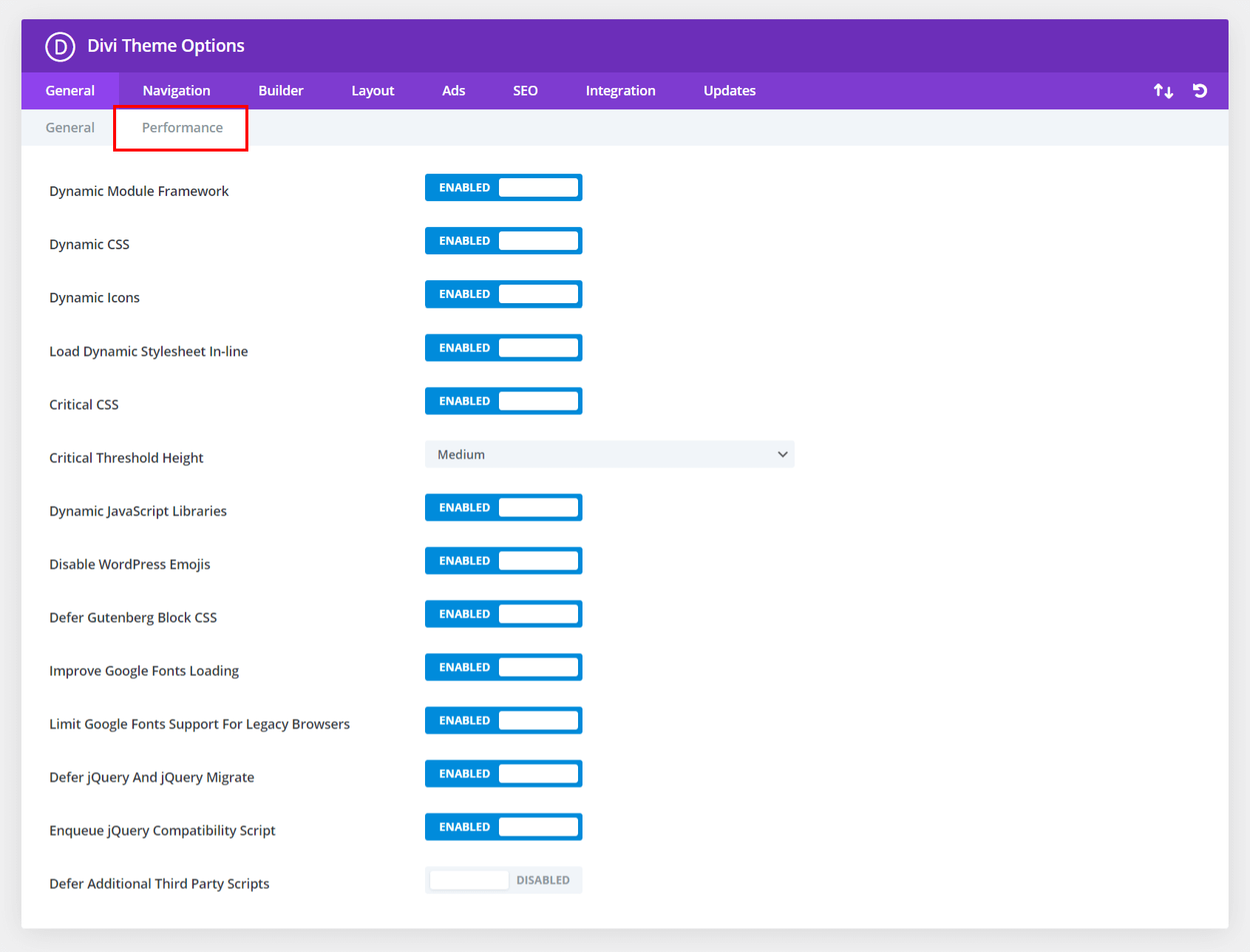 new performance tab in Divi Theme Options